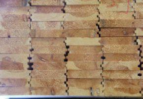 עץ אורן איכותי